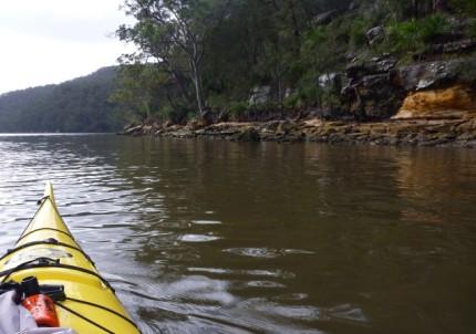 Aussie bushland - love it.
