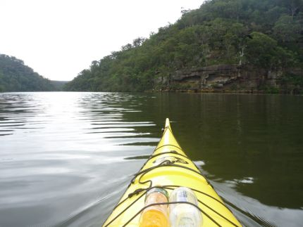 Paddling through Australian bushland