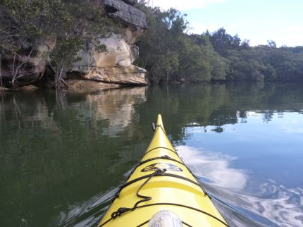 From this (Lane Cove National park)..................