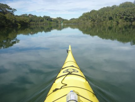 Glassy waters on Lane Cove River