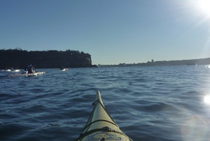 Fat Paddler trying to keep up with the racers - Middle Head, Sydney