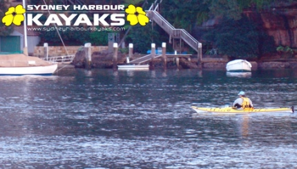 Minutes after the incident (image courtesy of Sydney Harbour Kayaks)