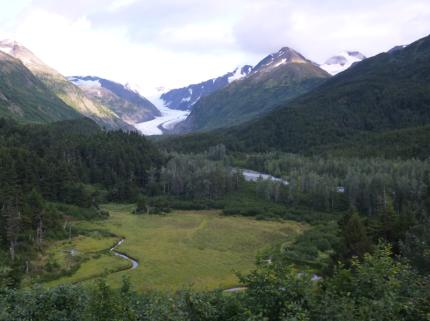 The view from the train window - Alaska