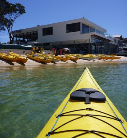 Just some of the hire fleet at Sydney Harbour Kayaks