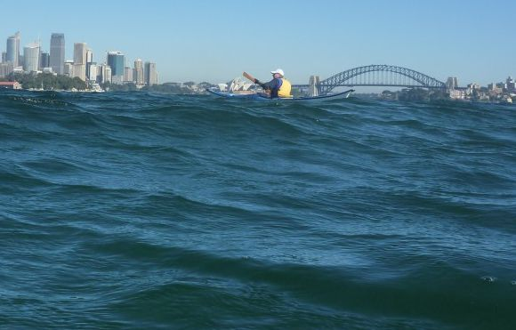 Even harbour's get swell and waves. Good fun to play in!