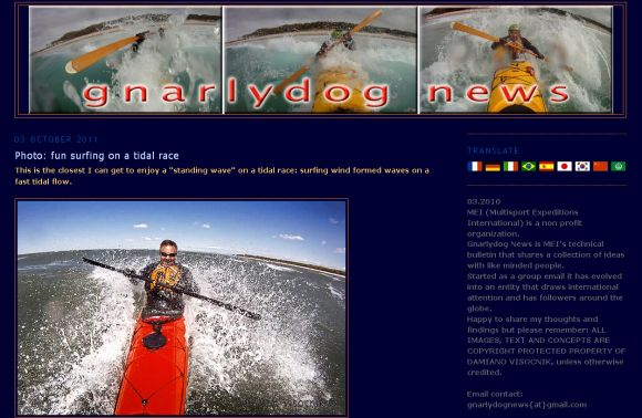 Gnarly Dog - does the seemingly impossible by surfing with a stick!
