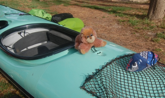 Jason's only companion on the trip - Omahm, the pirate monkey. Yarr!!