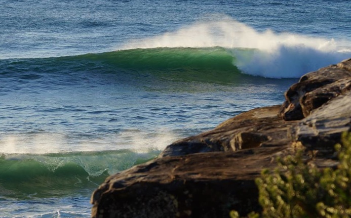 Manly Green Rooms