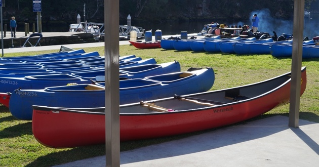 Dozens of canoes at Berowra Waters