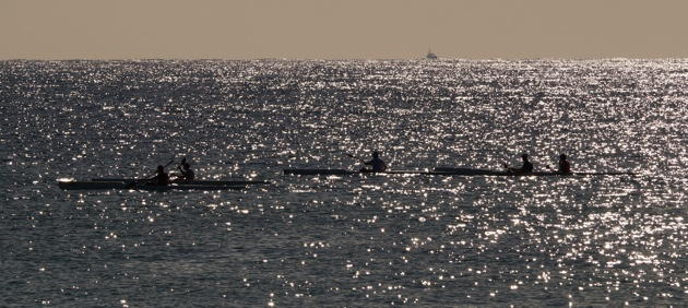 Surfski paddlers on the horizon on an early-morning training run along the northern beaches