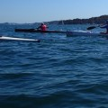 Paddle for Breast Cancer - Bayview 2014