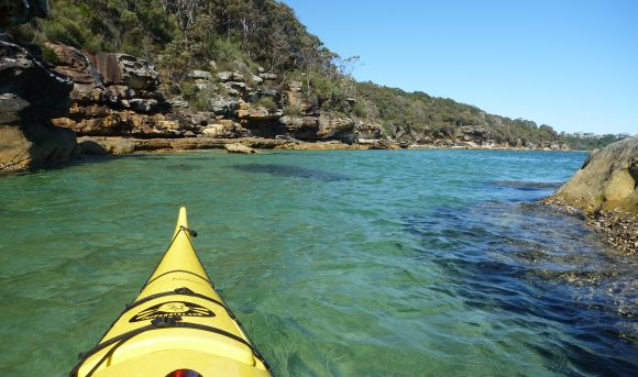 Summer paddles on crystal clear Sydney waters