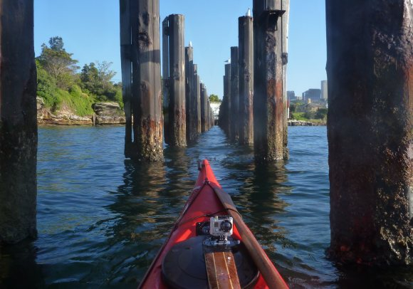 The poles of Goat Island, right in the middle of the Harbour